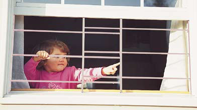 "Window Guard, Medium 23""-42"""