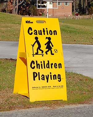 Large Driveway Safety Sign